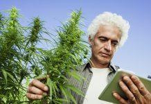Cannabis App
