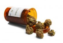 Legalized Cannabis