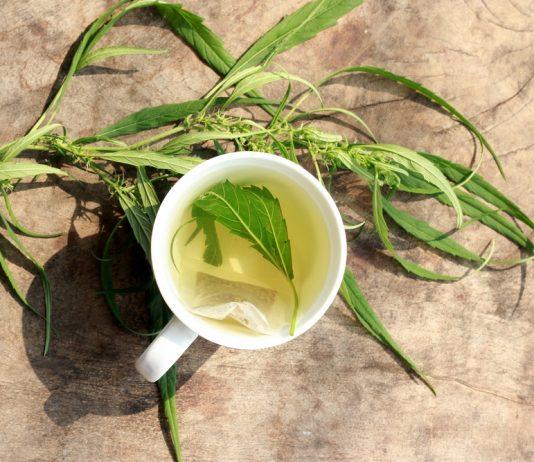 cannabis-infused-tea