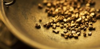 gold-nugget-exploration