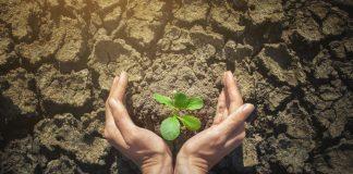 environment-services-company