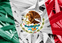 mexico-medical-marijuana