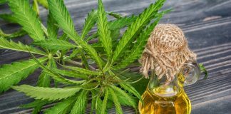 Cannabis Extract Testing Results