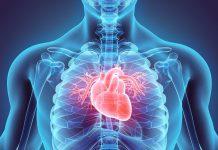 Cardiovascular Treatment