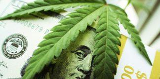 Cannabis Investment Development