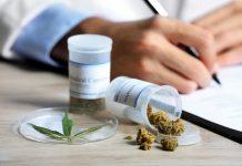 Cannabis Pain Clinic