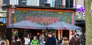 Cannabis Tourism Netherlands