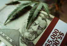 Cannabis Southwest Expo