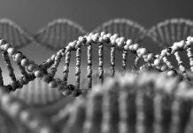 Molecular Diagnostics Industry Report