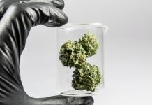 Cannabis Technology Online Investor Conference