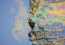 Oil Spill Clean Up Technology