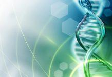 Biotech Merger Agreement Terminated