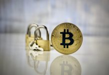 Bitcoin Digtial Currency Business Development Appointment