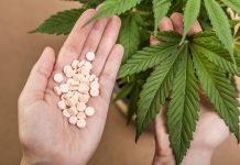 Medical CBD Cannabis Pharmaceutical Facility Louisiana