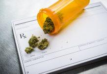 Medical Marijuana Von Baron Farms Earnings