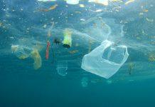Plastics Pollution Ocean Biodegradable