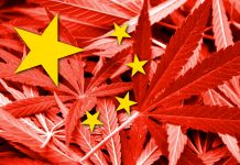 China Industrial Hemp Joint Venture MOU Agreement