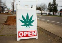 Medical Marijuana Treatment Center License Application Florida