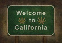 Nipton CA Town Purchase Cannabis Tourism