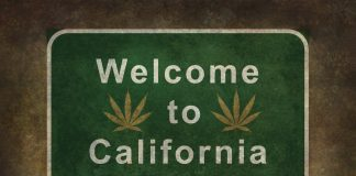 Nipton CA Town Purchase Cannabis Tourism