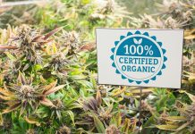 Organic Medical Marijuana Grower Current Information Letter