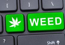 Cannabis Technology Colorado Dispensary Deal