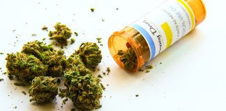Medical Cannabis Shipping to Germany