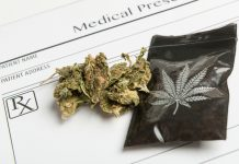 Medical Marijuana Largest Month Sales
