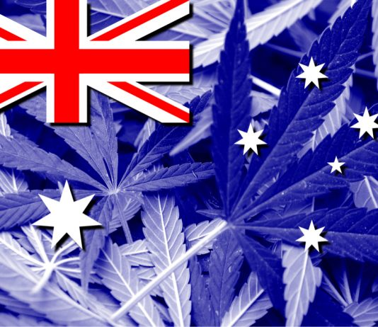 Australian Medical Cannabis Greenhouse Development