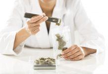 Cannabis Tech Data Applications ICO