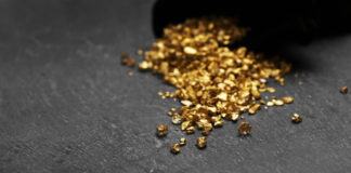 Emerging Growth Gold Mining Company