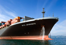 Emerging Growth Container Shipping Company