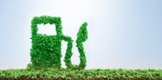 Emerging Growth Alternative Fuel Company