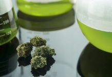 medical-cannabis-pharmaceuticals