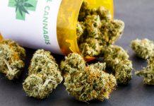 marijuana-consulting-liasion