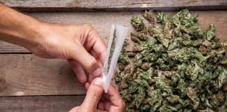 marijuana-cultivation-joint