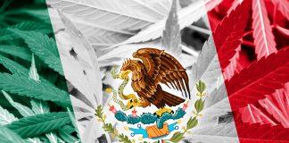 mexico-medical-marijuana
