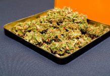 medical-marijuana-dispensary-ops