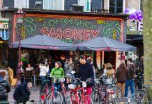 Cannabis Tourism Netherlands