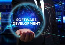 Software Development Business Subsidiary