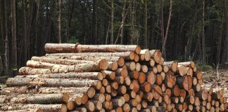 Timber Project Resources