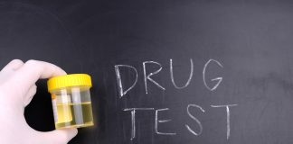 Drug Testing Lab Services