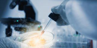 Biotech Tumor Treatment Annual Meeting