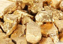 Gold Nuggets Drilling Program