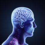 Brain Tumor Treatments Biotechnology 8K