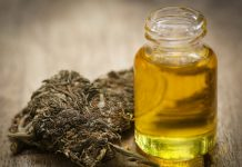 Cannabis Oil Extraction Analyst Coverage