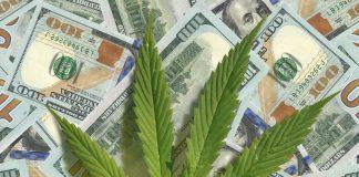 Cannabis Payment Solutions Bitcoin BlockChain
