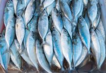 Fisheries Comprehensive Collaboration Agreement Sino Agro Foods