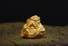 Gold Mining Western Australia MOU Agreement