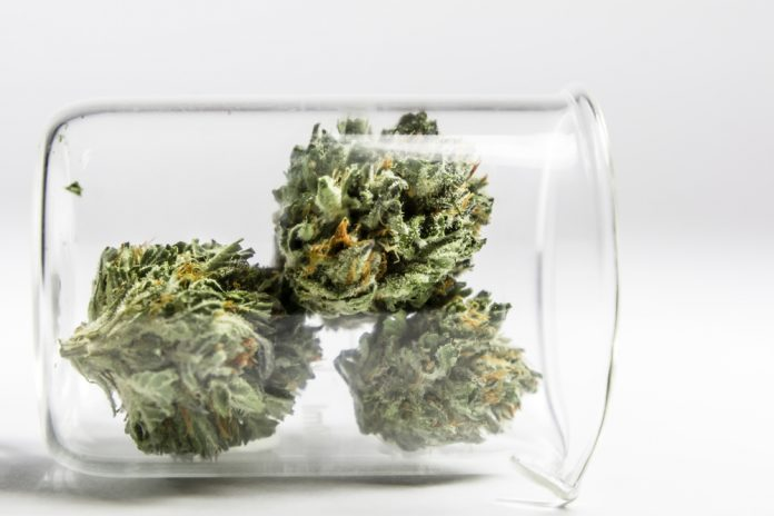 Cannabis Lab Testing CBD Extraction Growth Updates